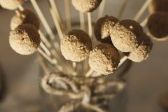 Palle saporite del biscotto Fotografia Stock Libera da Diritti