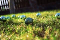 Palle su erba verde Fotografia Stock Libera da Diritti
