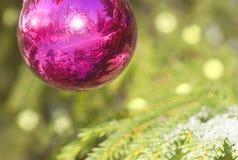 Palle su un pelliccia-albero di Natale Immagine Stock Libera da Diritti