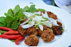 Palle tritate piccanti fritte della carne di maiale immagine stock