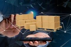 Pallet dei carboxes con il sistema della connessione di rete - 3d rendono Immagine Stock Libera da Diritti