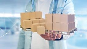 Pallet dei carboxes con il sistema della connessione di rete - 3d rendono Immagine Stock