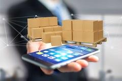 Pallet dei carboxes con il sistema della connessione di rete - 3d rendono Immagini Stock Libere da Diritti