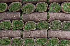 A pallet of freshly cut turf rolled and stacked ready for sale Royalty Free Stock Images