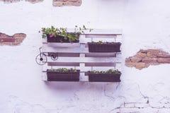 Pallet ideas for flowerpots Stock Photo