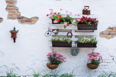 Pallet ideas for gardening. White storage industrial pallet used in gardening for a wall decoration as a shelf for flowerpots and other objects. Useful and Stock Photos