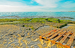 Pallet by the sea Stock Photo