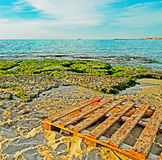 Pallet by the sea Royalty Free Stock Images