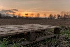 Pallet sunset. Agriculture - empty pallet in front of warm sunset Stock Image