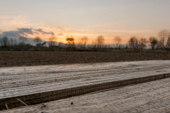 Pallet sunset. Agriculture - empty pallet in front of warm sunset Stock Photo