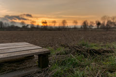 Pallet sunset. Agriculture - empty pallet in front of warm sunset Royalty Free Stock Image