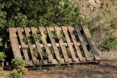 Pallet of wood filed. In the garden Stock Photos