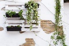 Palletideeën voor het tuinieren Royalty-vrije Stock Afbeelding