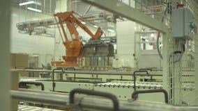 Palletising ρομπότ απόθεμα βίντεο
