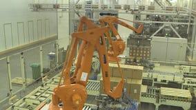 Palletising τα ρομπότ 2 απόθεμα βίντεο
