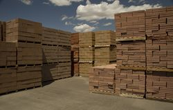 Palletized Bricks stock image