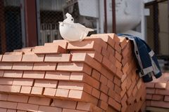 Pallets with building bricks. residential building construction and architecture.  royalty free stock photo