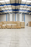Pallets with cartons in warehouse. Pallets With brown carbord Cartons In big Warehouse Royalty Free Stock Photos