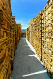 Pallets corridor Royalty Free Stock Images