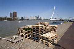 Pallets on the quay side in Rotterdam royalty free stock photo