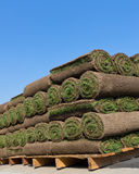 Pallets of sod stock images
