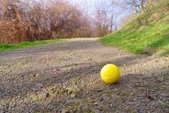 Pallina da tennis sola Immagine Stock Libera da Diritti