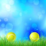 Pallina da tennis su un'erba verde illustrazione vettoriale