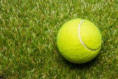 Pallina da tennis sul campo da tennis sull'erba di tennis Fotografia Stock Libera da Diritti