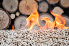 Palline Biomas Fotografie Stock Libere da Diritti