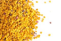 Palline del polline giallo dell'ape fotografia stock