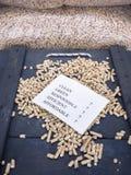 Palline e lista di controllo di legno Fotografie Stock Libere da Diritti