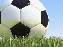 Pallone da calcio su erba Fotografia Stock Libera da Diritti