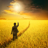 Pallone della lampadina della tenuta dell'uomo di affari sul modo nel giacimento del riso e nel tramonto gialli della nuvola di p Fotografia Stock