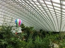Pallone nel padiglione in pieno delle piante fotografie stock libere da diritti