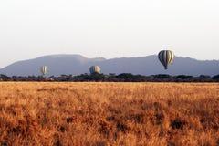 Palloni della savanna Fotografia Stock