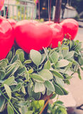 Palloni rossi del cuore con la pianta del rampicante Fotografia Stock