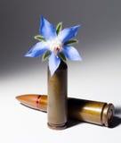 Pallottola del fucile e una pallottola del fiore Fotografia Stock