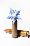 Pallottola del fucile e una pallottola del fiore Fotografie Stock Libere da Diritti