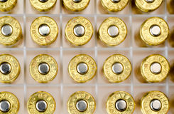 Pallottole nel caso Fotografie Stock