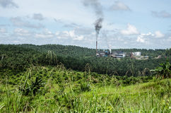 Palmöl-Mühle stockfotografie