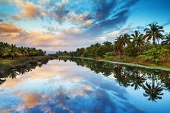 Palm湖反射 免版税库存图片