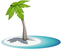 Palm. The vector illustration of palm Royalty Free Stock Photo