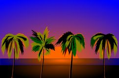 Palm. At sunset - at the beach,illustrations vector illustration