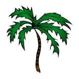 palm vektor illustrationer