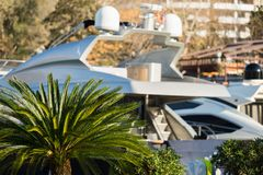 Palm and a luxury yacht Stock Photos