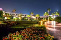 Palm alley at night, Sharm el Sheikh, Egypt royalty free stock photo