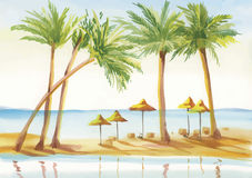 Palm alley watercolor painting Stock Photography
