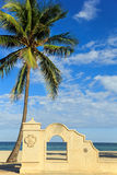 The palm and arch on the beach. The palm and stone arch on the beach Royalty Free Stock Photo