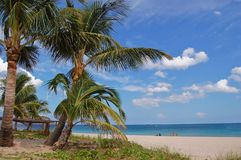 Palm Beach Florida  Royalty Free Stock Photo
