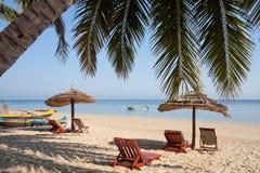 Palm beach Stock Photography